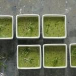 Суп из зелени и авокадо