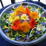 Сыроедные цветы