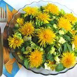 Сыроедческие весенние блюда из овощей и трав